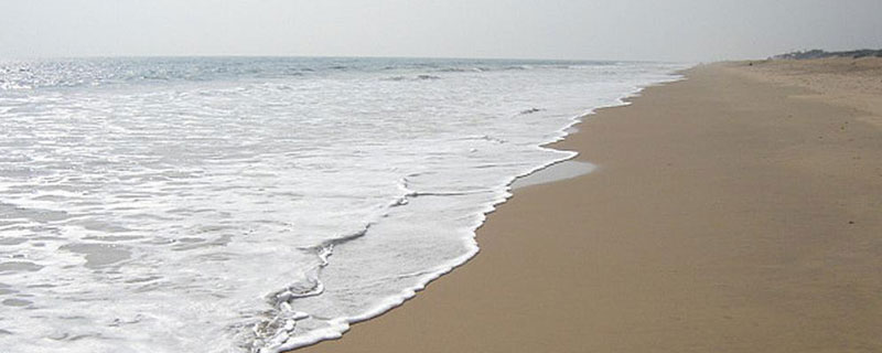 beach-tours-in-odisha