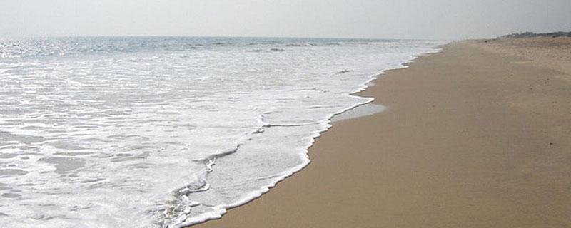 beach-tours-in-odisha