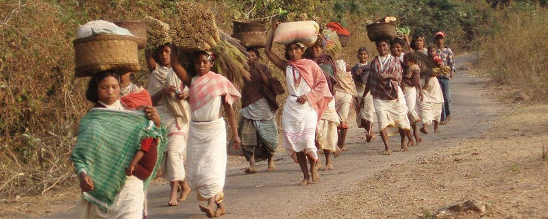 tribal-village-koraput