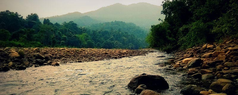 wildlife-tours-in-odisha
